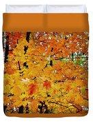 Fall Colors 2014-3 Duvet Cover