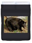 Florida Black Bear Duvet Cover