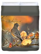 Glowing Robin Duvet Cover