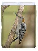 Golden-fronted Woodpecker Duvet Cover