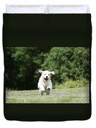 Golden Retriever Puppy Duvet Cover by John Daniels