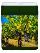 Grapes On The Vine Duvet Cover by Jeff Swan