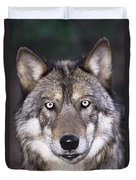 Gray Wolf Portrait Endangered Species Wildlife Rescue Duvet Cover