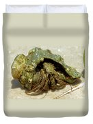 Green Striped Hermit Crab Duvet Cover