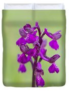 Green-winged Orchid Duvet Cover