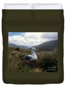 Grey-headed Albatross Duvet Cover