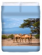 Group Of Camels In Africa Duvet Cover