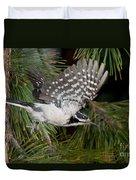 Hairy Woodpecker Duvet Cover