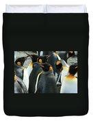 King Penguin Colony Duvet Cover