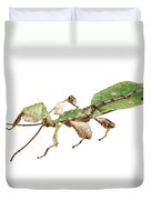 Leaf Insect Species Phyllium Bioculatum Male Duvet Cover