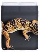 Leopard Gecko Eublepharis Macularius Duvet Cover