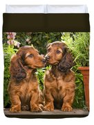 Long-haired Dachshunds Duvet Cover