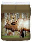 Male Elk Duvet Cover