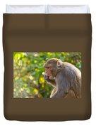 Macaque Eating An Orange Duvet Cover