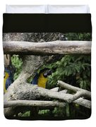 2 Macaws Framed By Tree Branches Inside The Jurong Bird Park Duvet Cover