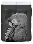 Macaws Of Color B W 17 Duvet Cover
