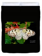 Malabar Tree Nymph Butterfly Duvet Cover