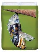 Malachite Butterfly Metamorphosis Duvet Cover