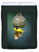 Masked Weaver At Nest Duvet Cover by Johan Swanepoel