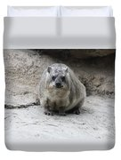 Rock Hyrax Headshot Duvet Cover