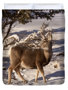 Mule Deer   #6339 Duvet Cover