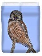 Northern Hawk Owl  Duvet Cover