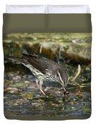 Northern Waterthrush Duvet Cover