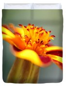 Novelty French Marigold Named Mr. Majestic Duvet Cover