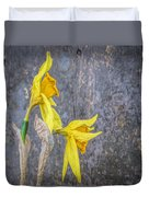 2 Old Daffodils Duvet Cover