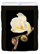 Orchid Duvet Cover by Ilze Lucero