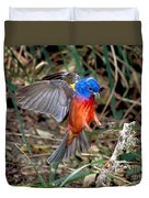 Painted Bunting Passerina Ciris Duvet Cover