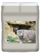 Pallas Cat Duvet Cover