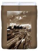 Pemaquid Rocks Duvet Cover by Skip Willits