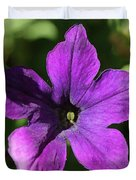 Petunia Hybrid From The Sparklers Mix Duvet Cover