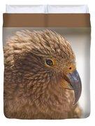 Portrait Of Nz Alpine Parrot Kea Nestor Notabilis Duvet Cover