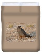 Red Footed Falcon Falco Vespertinus Duvet Cover
