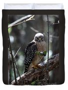 Red - Shouldered Hawk II Duvet Cover