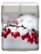 Red Winter Berries Under Snow Duvet Cover