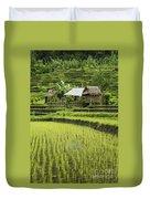 Rice Fields In Bali Indonesia Duvet Cover