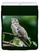 Rose-breasted Grosbeak Duvet Cover