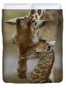 Rothschild Giraffe And Calf Duvet Cover