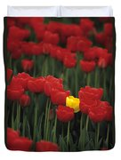 Rows Of Red Tulips With One Yellow Tulip Duvet Cover