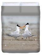 Royal Terns Duvet Cover