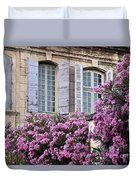 Saint Remy Windows Duvet Cover