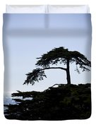 Silhouette Of Monterey Cypress Tree Duvet Cover