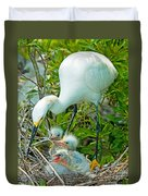 Snowy Egret Tending Young Duvet Cover