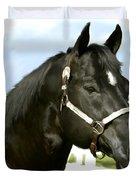 Stallion Duvet Cover by Paul Tagliamonte