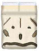 Strange Insects Duvet Cover