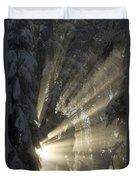 Sunbeam Duvet Cover