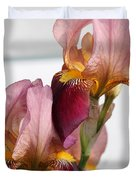 Tall Bearded Iris Named Indian Chief Duvet Cover